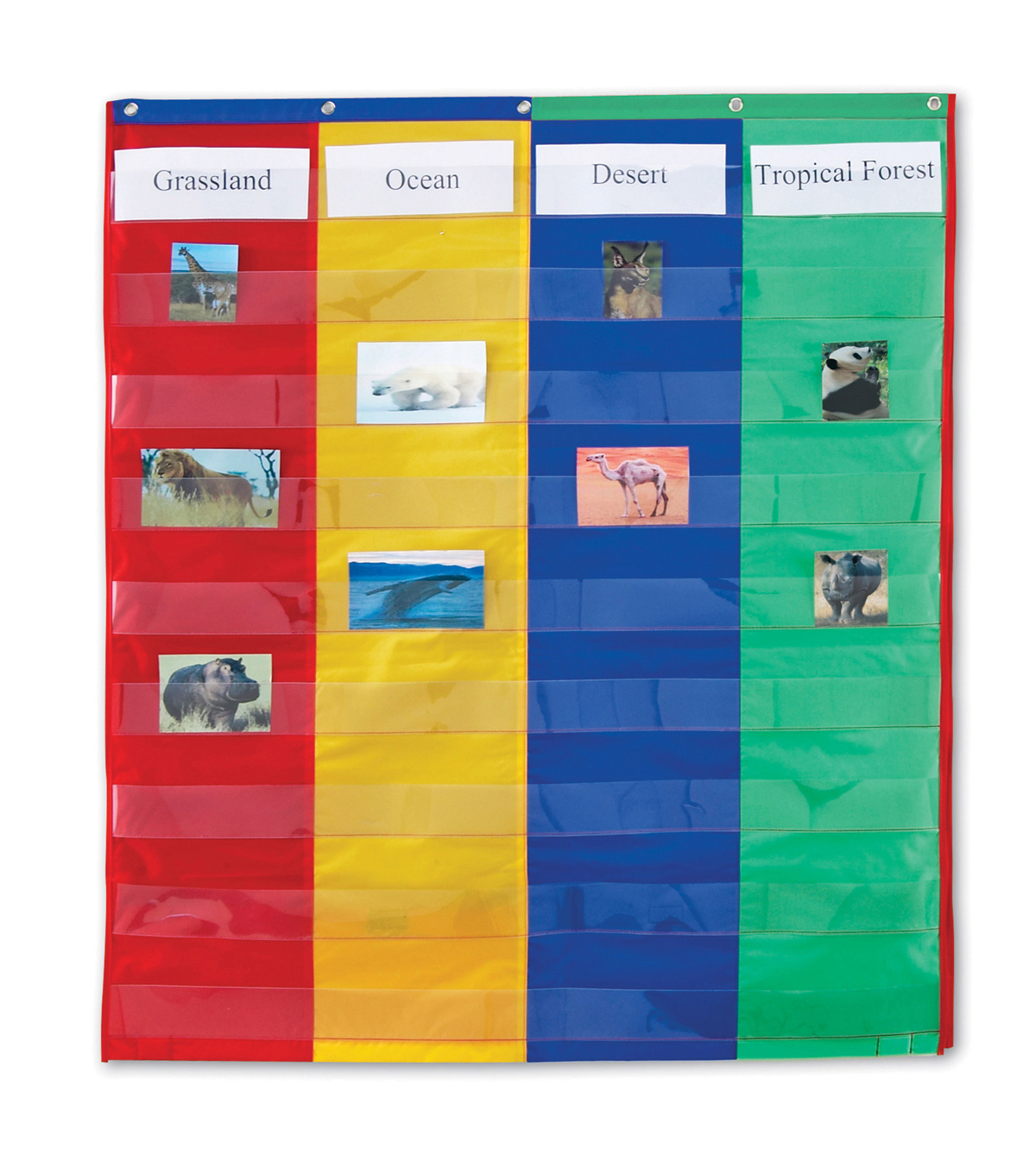 Learning Resources 2 & 4 Column Double-Sided Pocket Chart