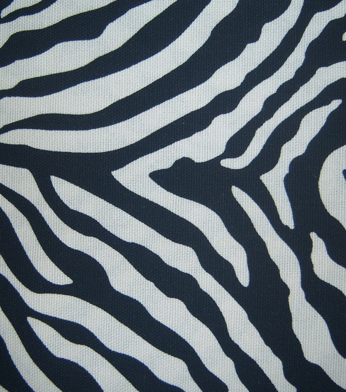 Home Essentials Lightweight Decor Fabric 45\u0022-Black Zebra