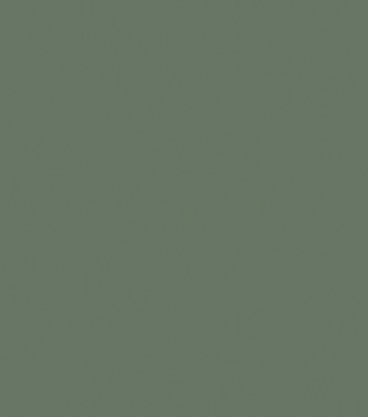 Delta Ceramcoat Acrylic Paint 2 oz, Hippo Grey