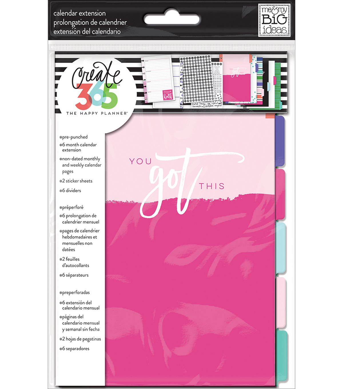 The Happy Planner Mini Planner Extension Pack-6 Month