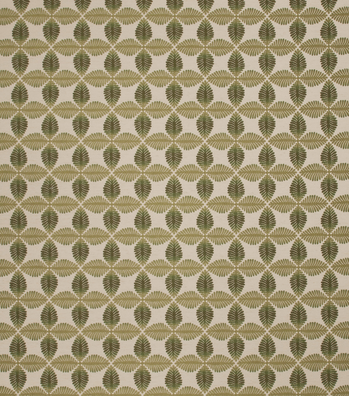 Conran Leaf Fern Swatch
