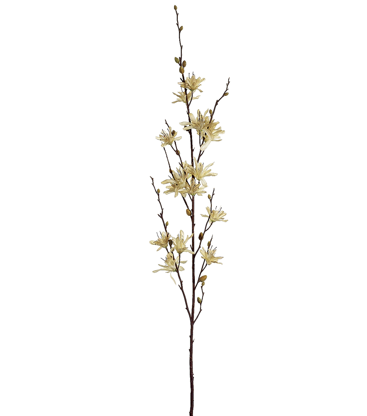 Bloom Room 34\u0022 Winter Lily Spray-Beige