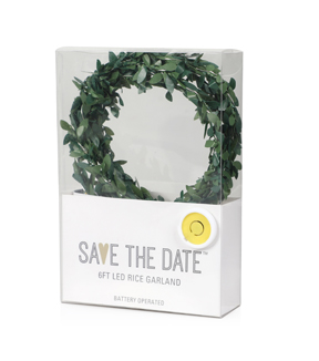 Save the Date 6ft LED Rice Garland