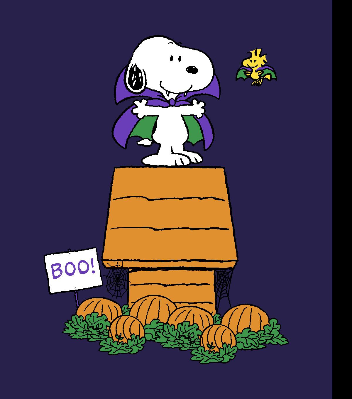 peanuts halloween no sew fleece throw 72 snoopy joann