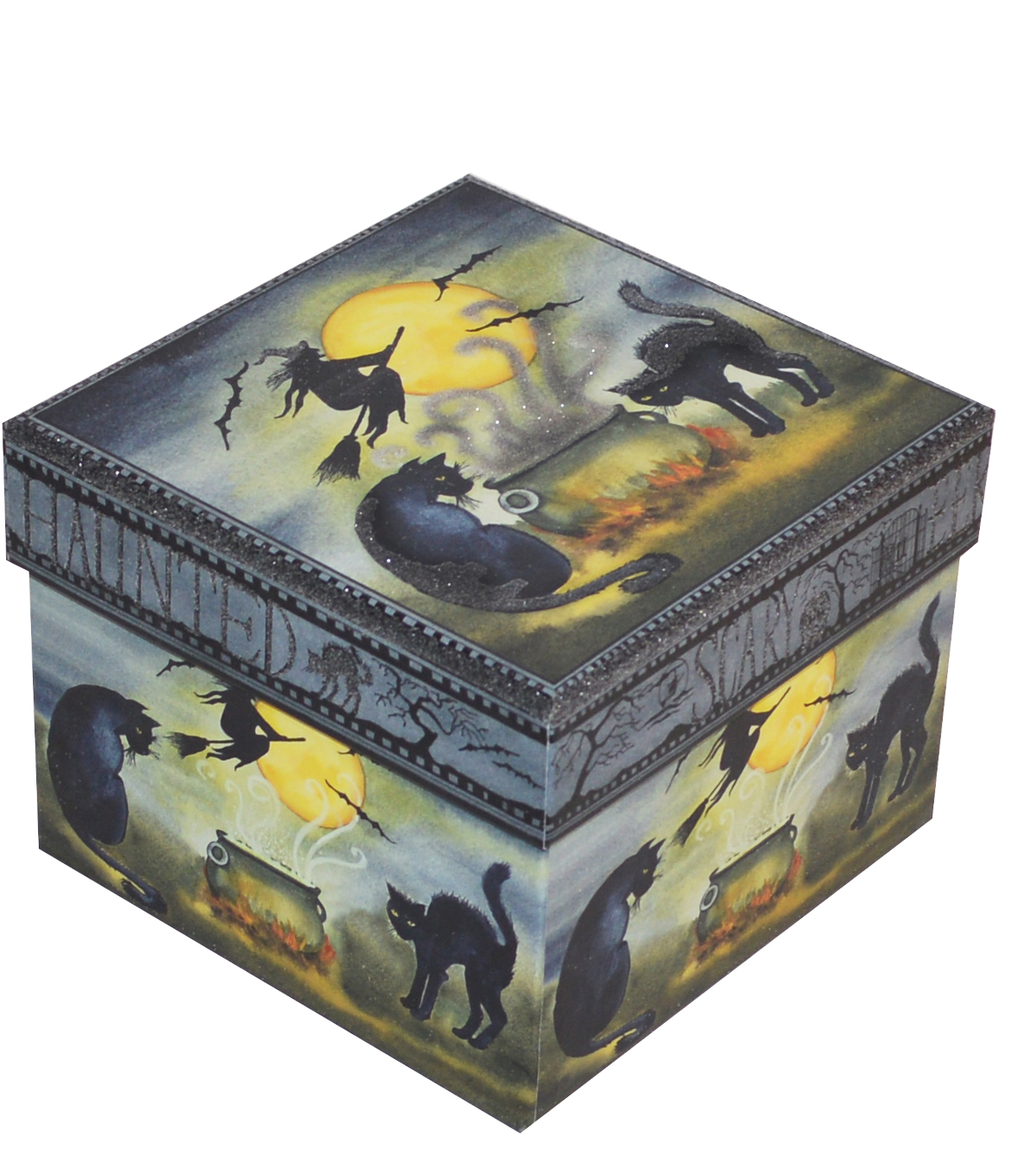 Organizing Essentials Medium Square Box-Haunting Halloween