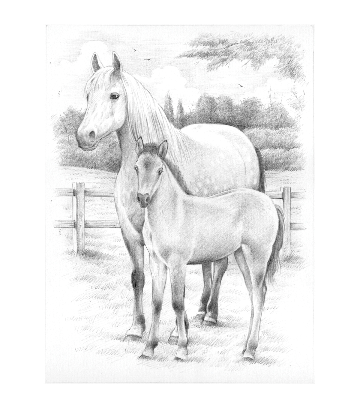 Sketching By Number Kit 8\u0022X11-3/4\u0022-Horse And Foal