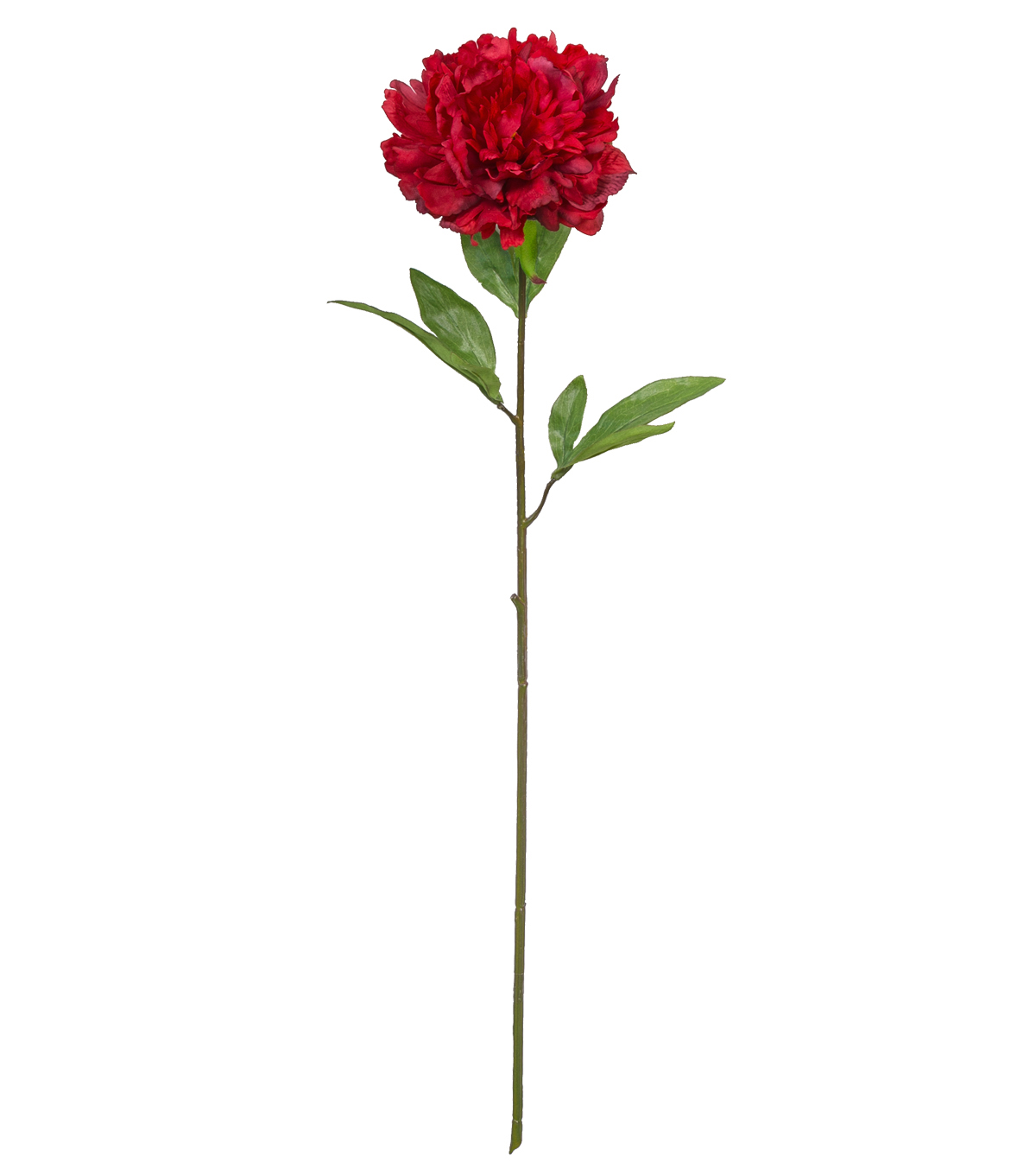 Fresh Picked Spring 27.5\u0027\u0027 Peony Stem-Red