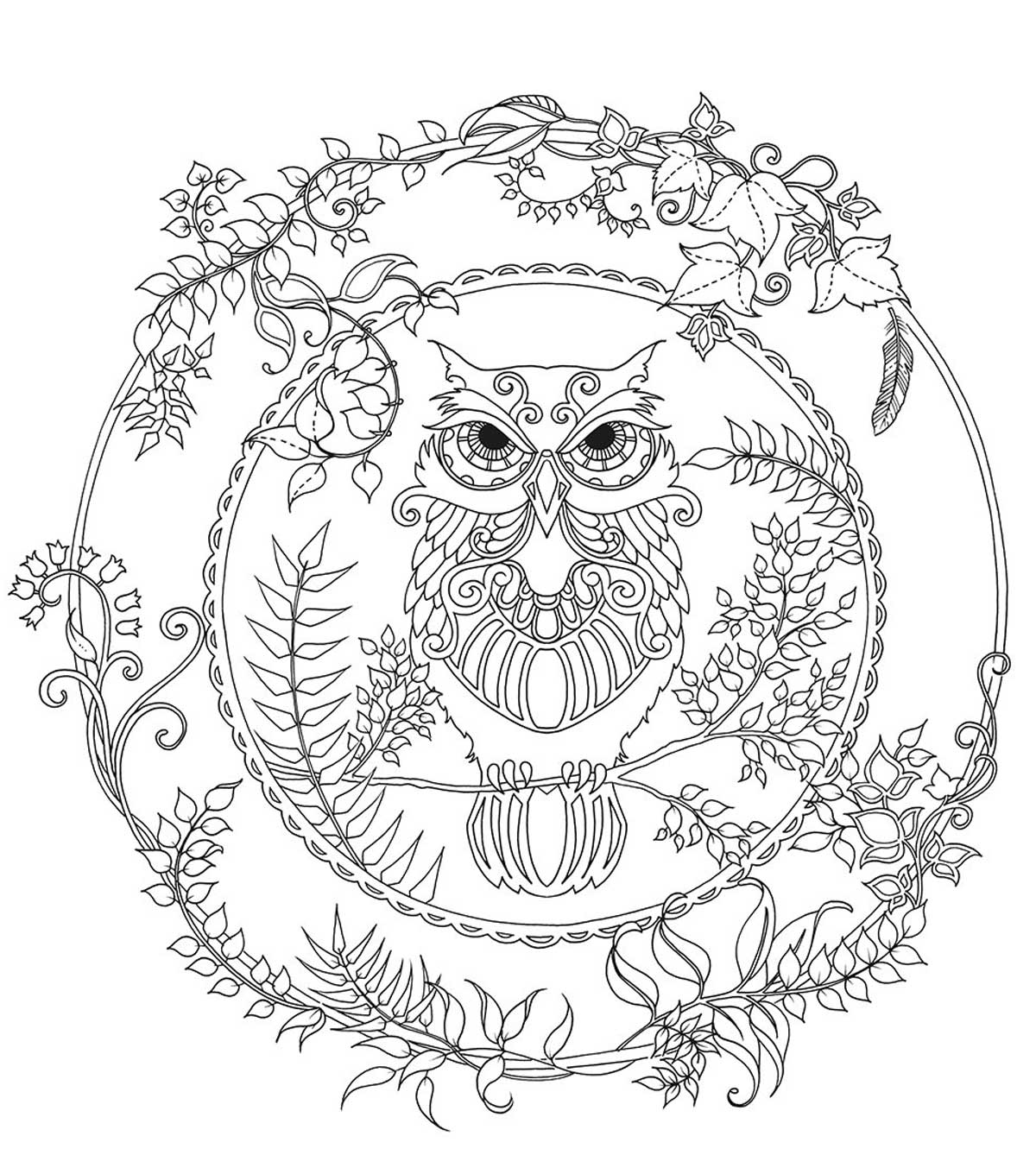 Coloring Books For Adults Enchanted Forest