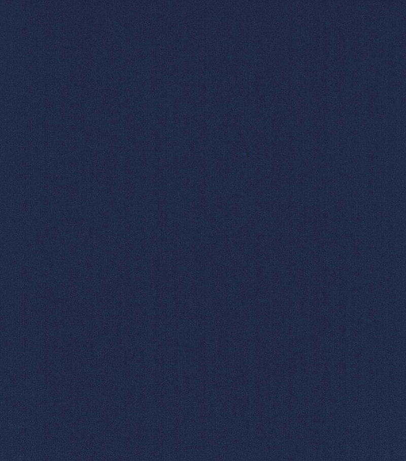 Blizzard Fleece Fabric -Solids, Patriot Blue