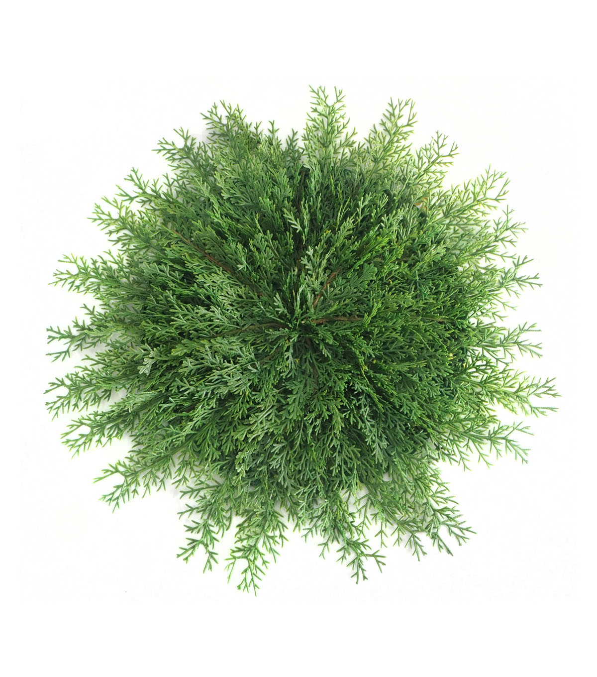 blooming holiday christmas greenery branch placemat - Christmas Greenery