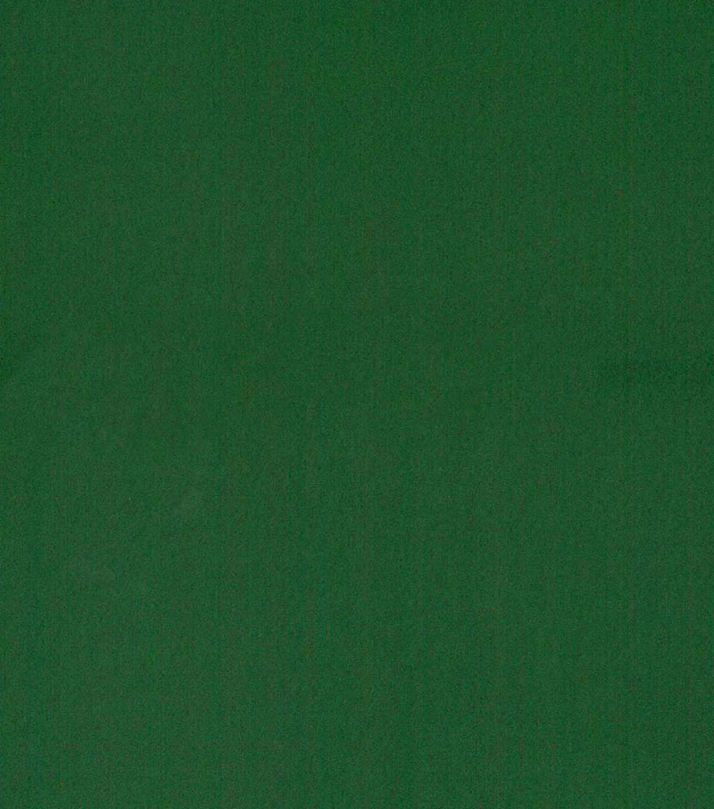 Blizzard Fleece Fabric -Solids, Dark Green