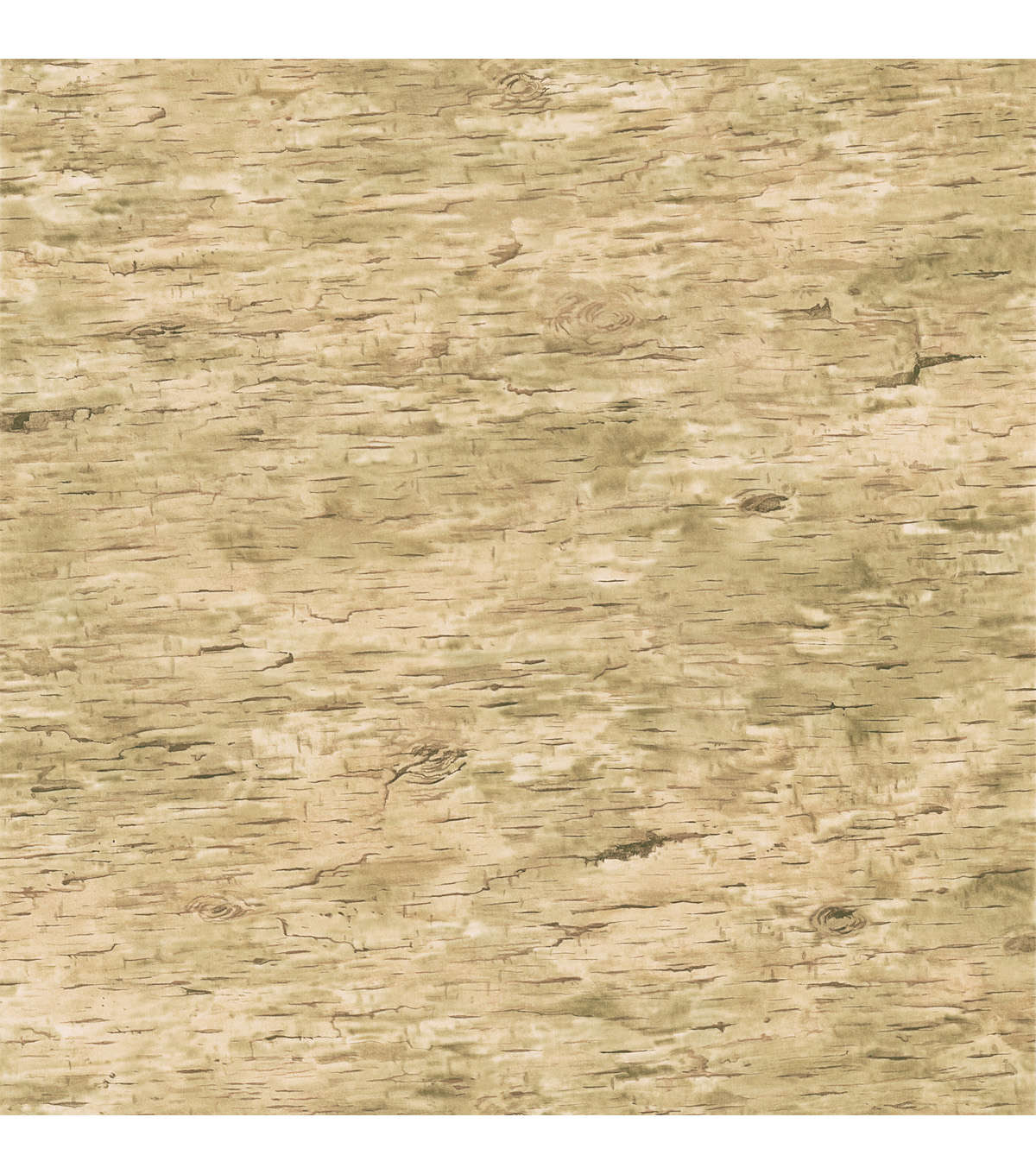 Birch Light Brown Bark Texture Wallpaper