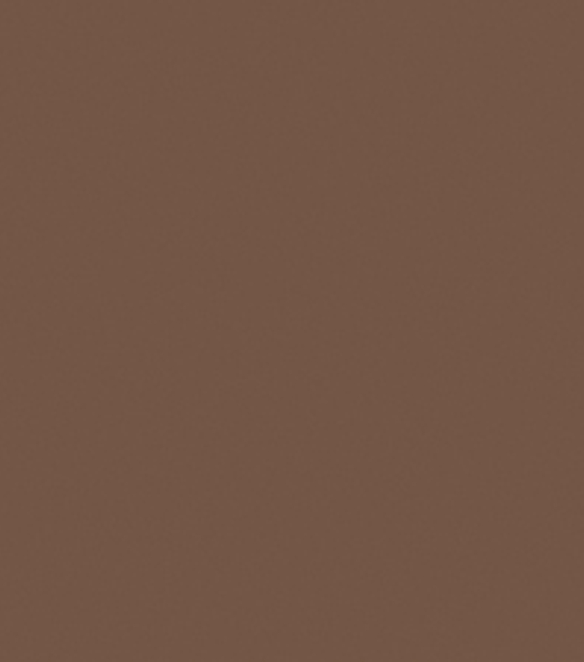 Delta Ceramcoat Acrylic Paint 2 oz, Brown Iron Oxide