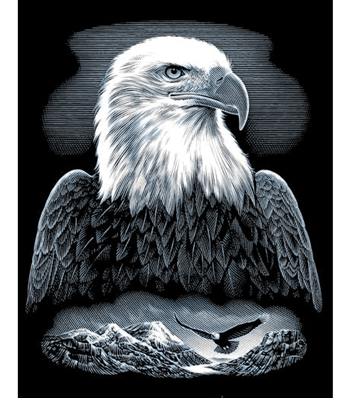 Reeves Scraperfoil Kit 8\u0022X10-Bald Eagle