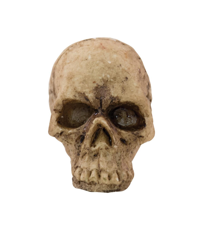 Tim Holtz Idea Ology Halloween Skulls