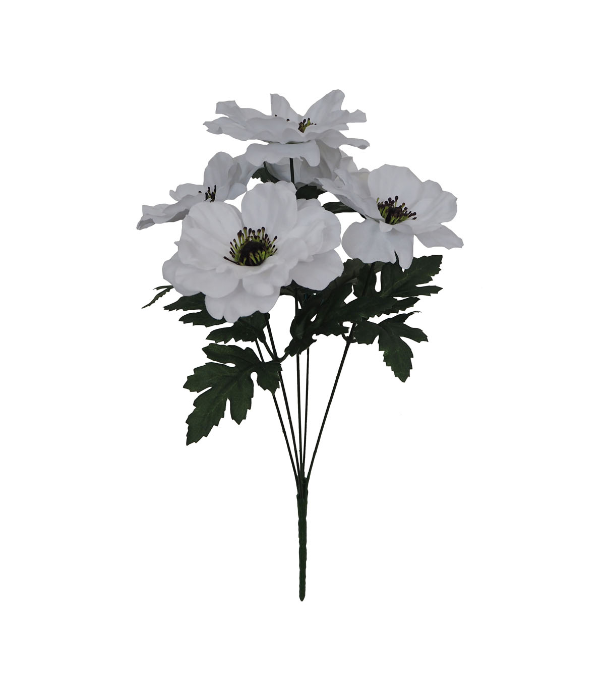 Blooming Holiday Christmas Anemone Bush-White