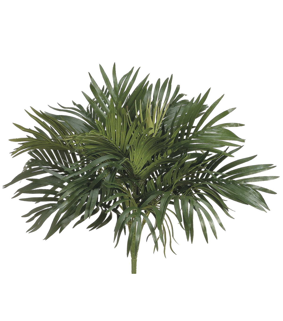 16\u0022 Parlor Palm Bush with O Twig Green