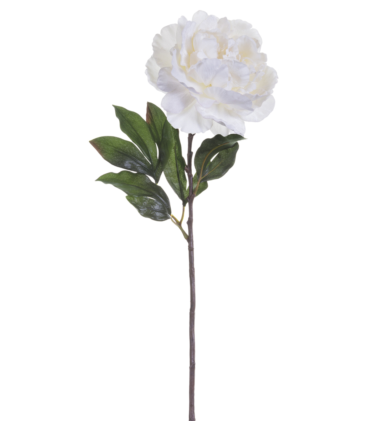 Bloom Room 26\u0027\u0027 Velvet Peony Stem-White