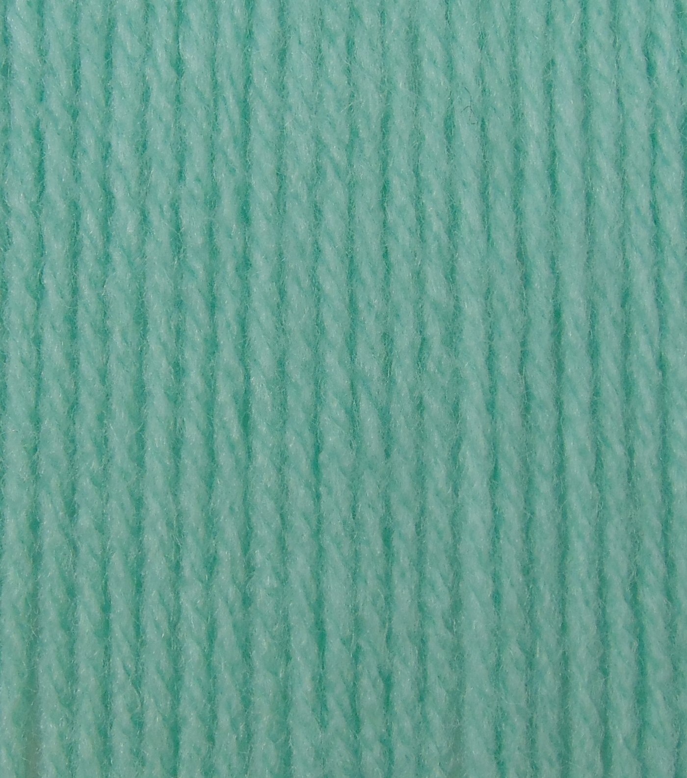 Big Twist Collection Value Worsted Yarn, Light Teal