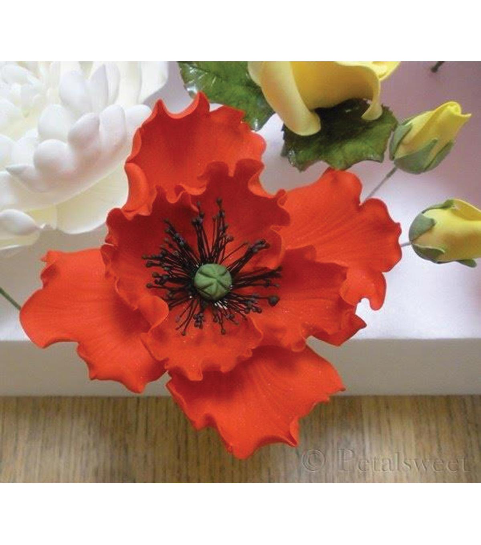 Wilton gum paste flower cutter set review flowers healthy wilton gum paste cut outs poppy mightylinksfo