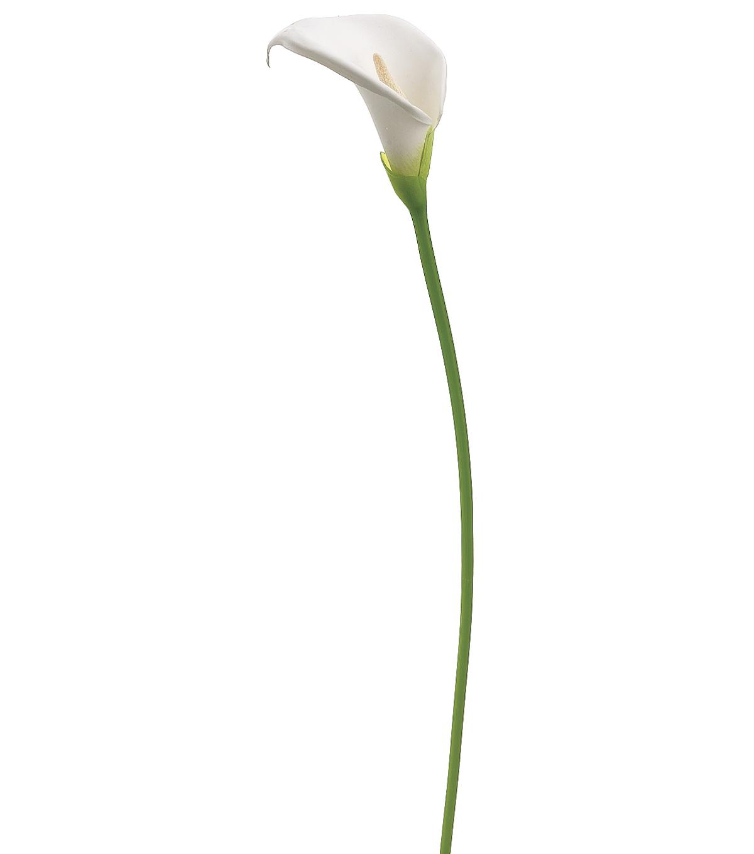 31 Large Calla Lily Spray White Joann