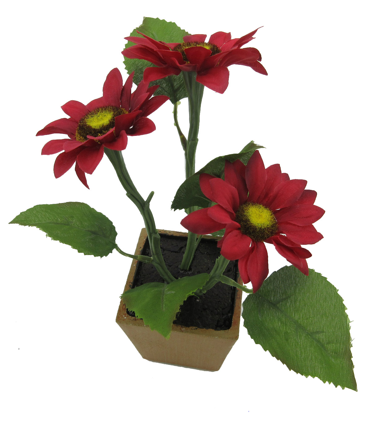 Blooming Autumn Mini Sunflower in Pot-Red