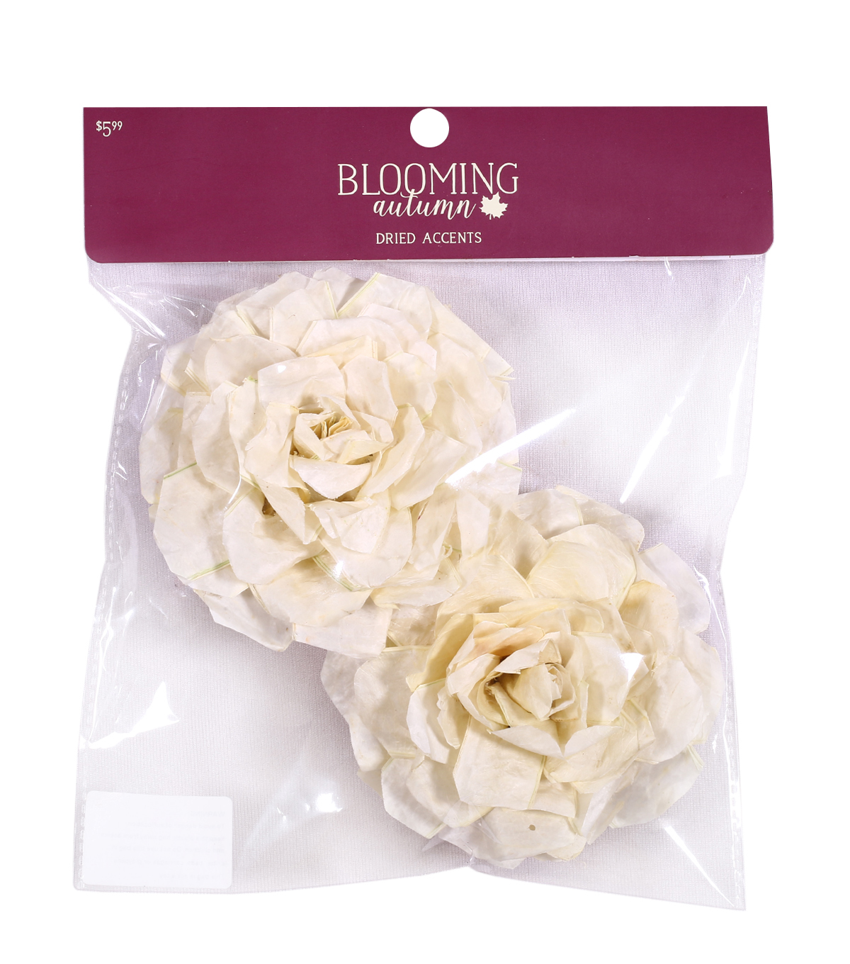 Blooming Autumn 2 pk Dried Accent Sola Roses-Cream