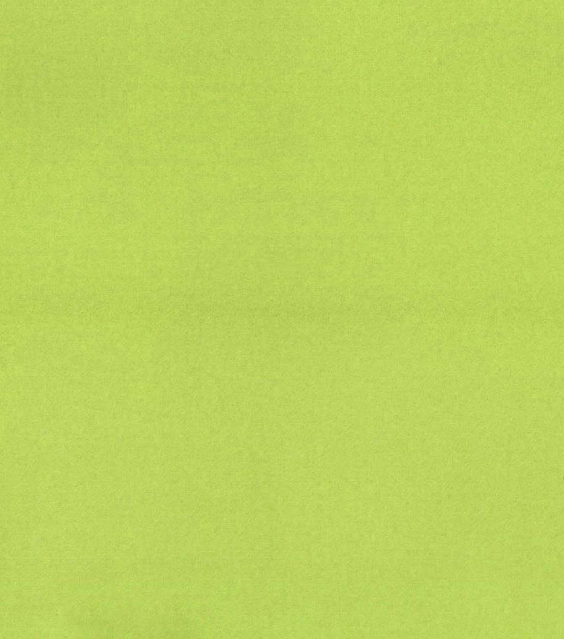 Blizzard Fleece Fabric -Solids, Lettuce Green