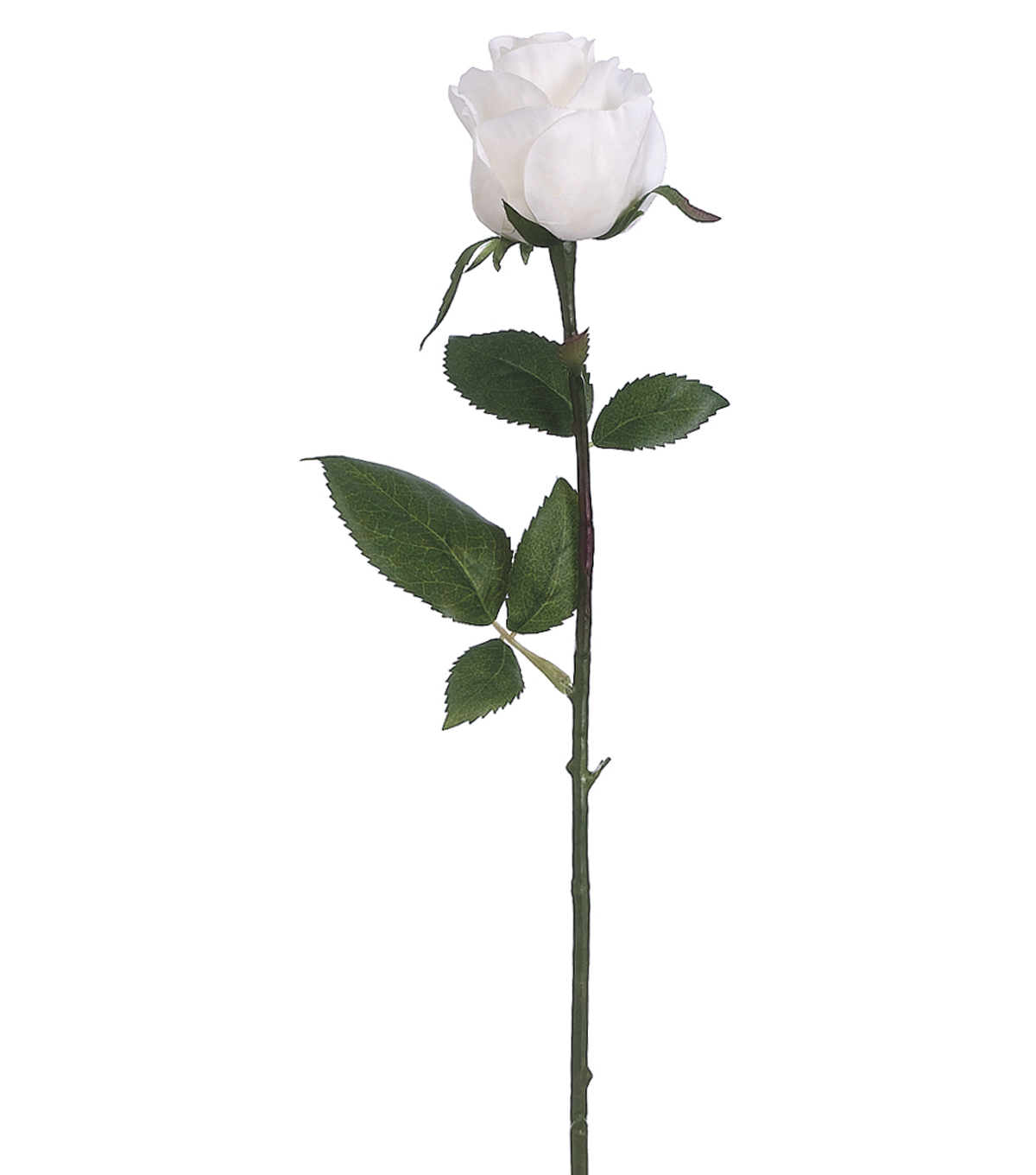 Bloom Room Pack of 12 17.5\u0022 Rose Bud Stems-White