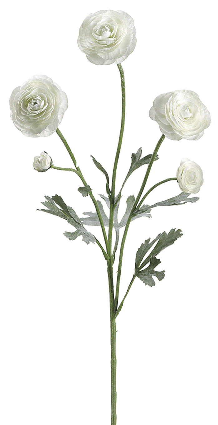 Bloom Room 29\u0022 Ranunculus Spray x3-White