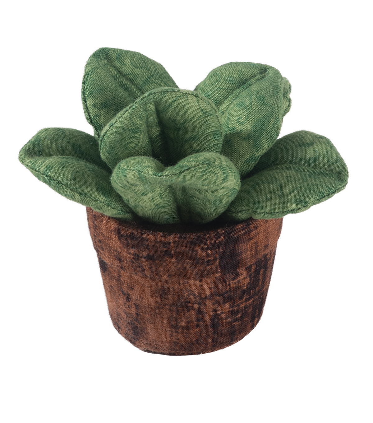 Wide Leaf Succulent Pin Cushion