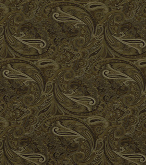 Home Decor 8\u0022x8\u0022 Fabric Swatch-Robert Allen Patna Paisley Noir Fabric