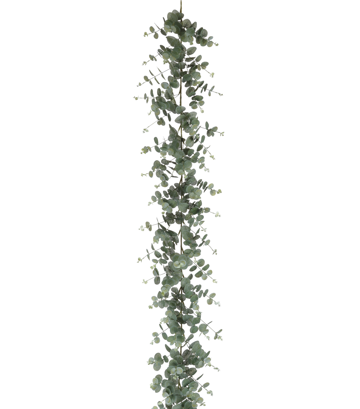 Bloom Room 6\u0027 Eucalyptus Garland
