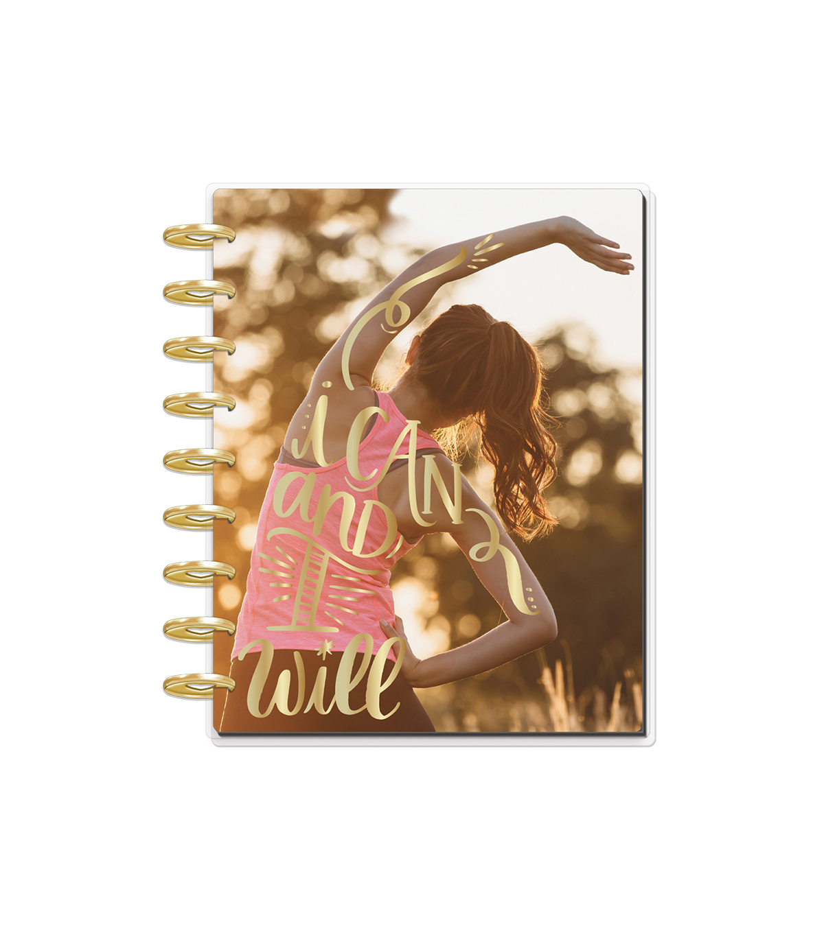 The Happy Planner Girl 12 Month Planner-Healthy Hero