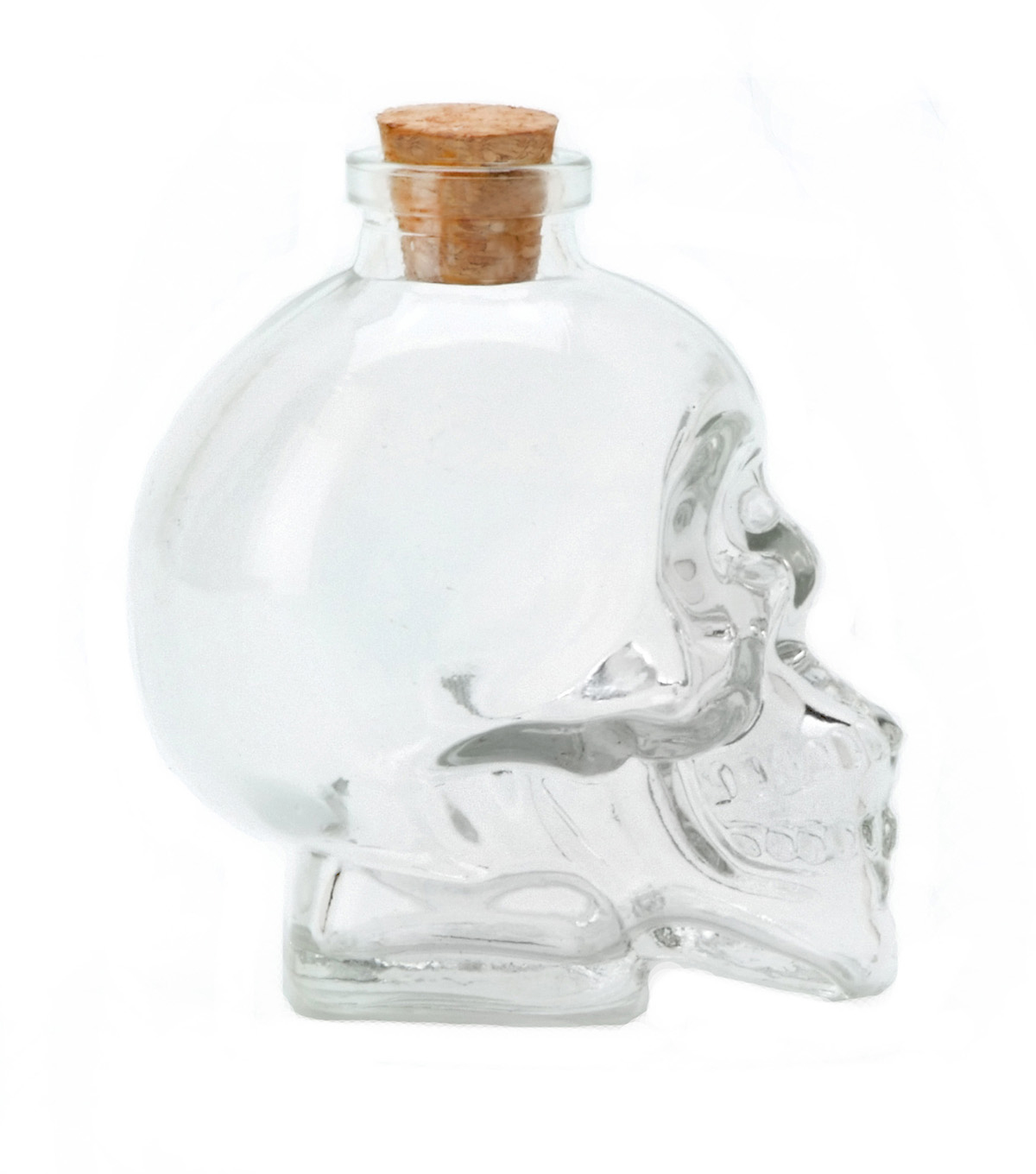 Darice Skull Glass Bottle Clear 100ml