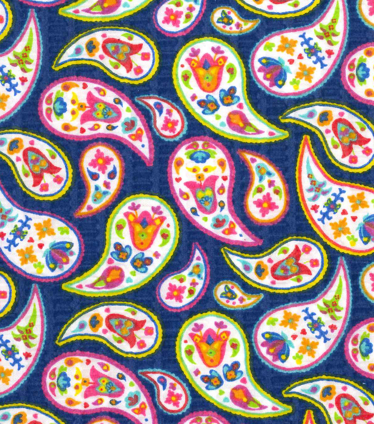 Tutti Fruitti Wings & Things Embellished Fabric 44\u0027\u0027-Multi Paisley