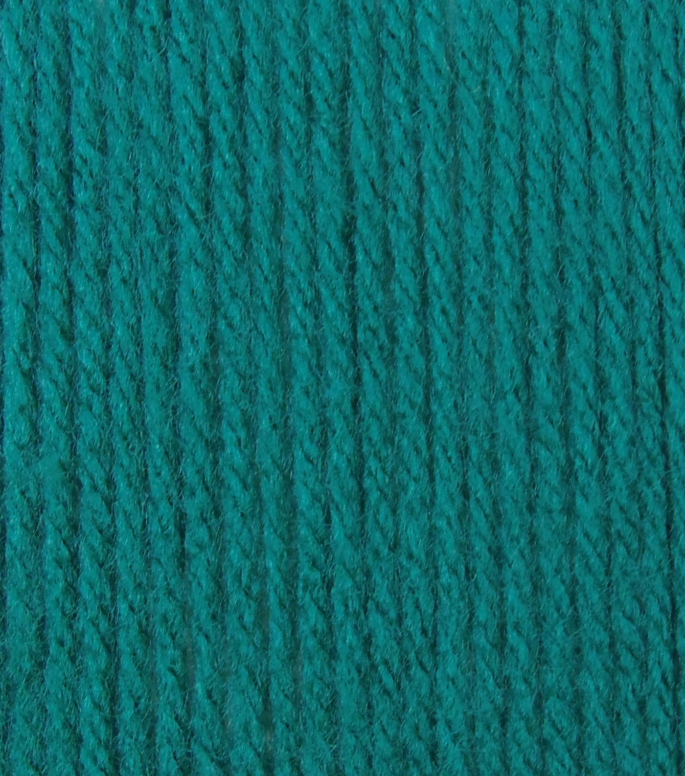 Big Twist Collection Value Worsted Yarn, Dark Teal