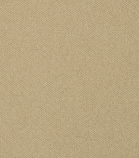 Home Decor 8\u0022x8\u0022 Fabric Swatch-Bella Beige