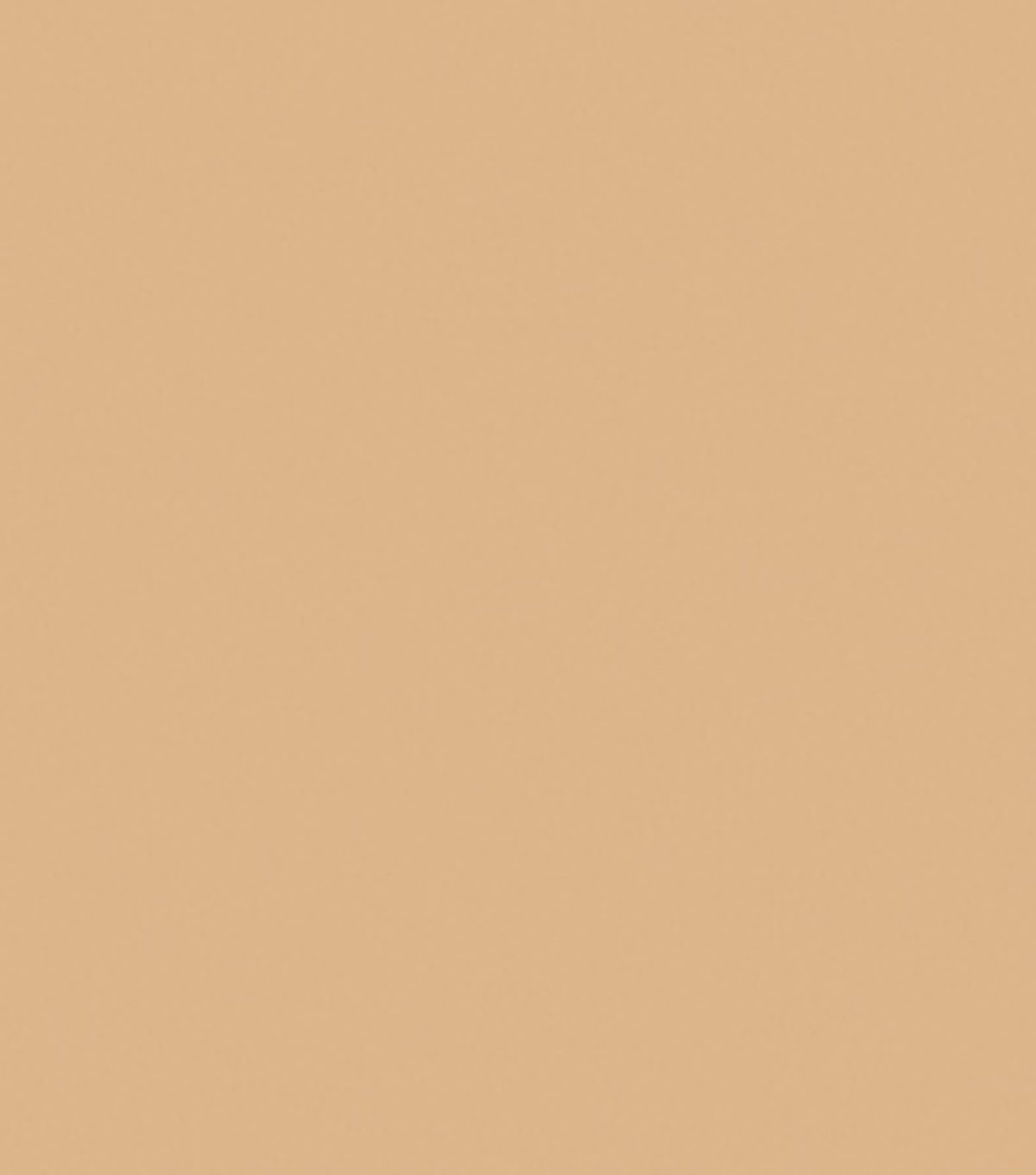 Delta Ceramcoat Acrylic Paint 2 oz, Trail Tan