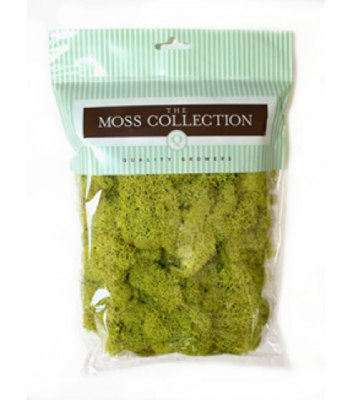 Light Green Reindeer Moss-100 cu in