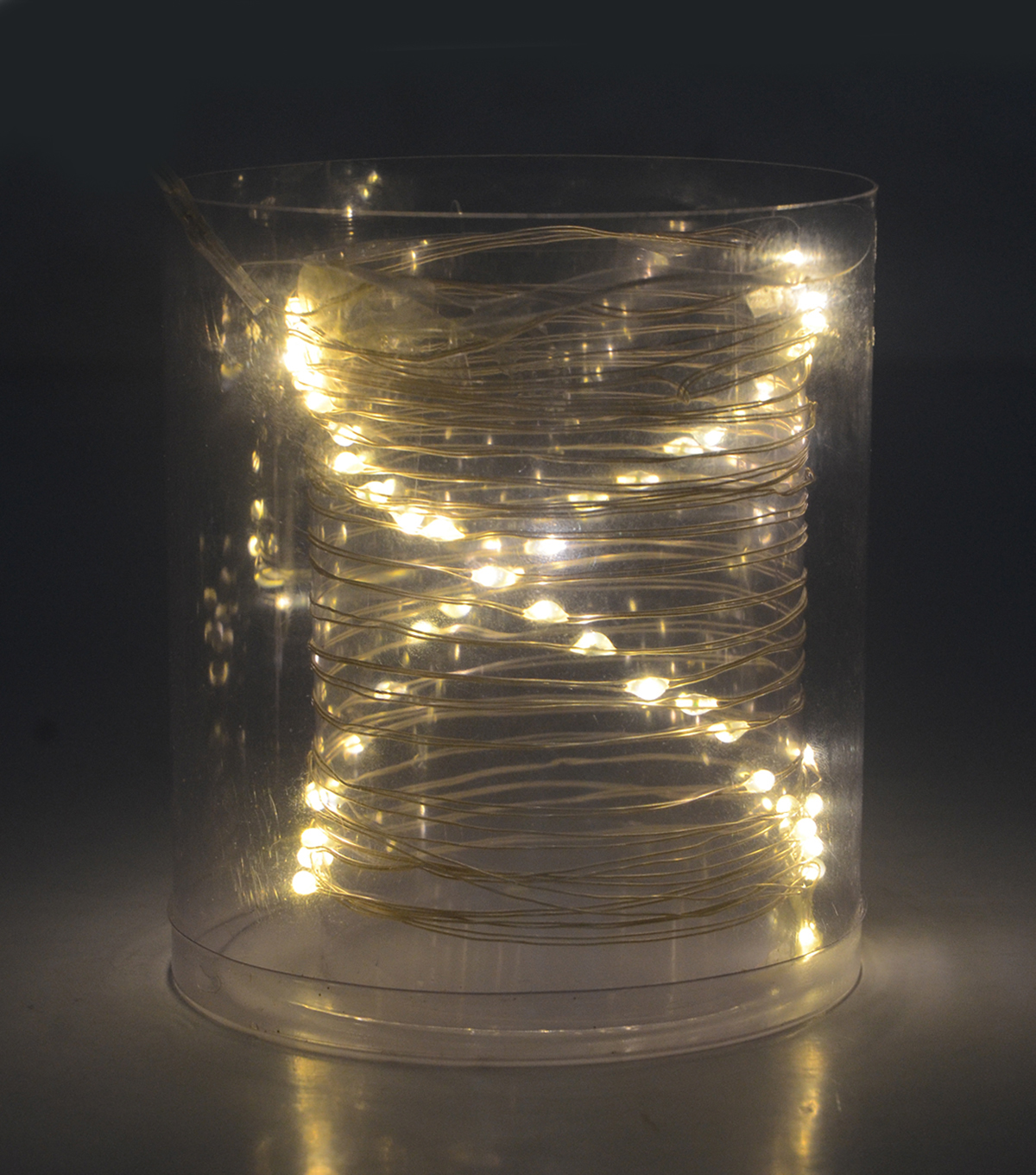 LED String Lights 50ct-Warm White With Silver Wire