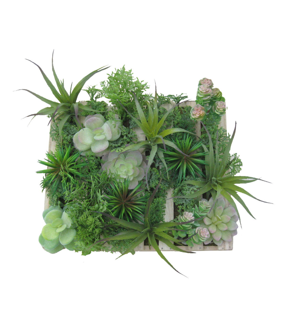 Bloom Room Succulent Grass Arrangement