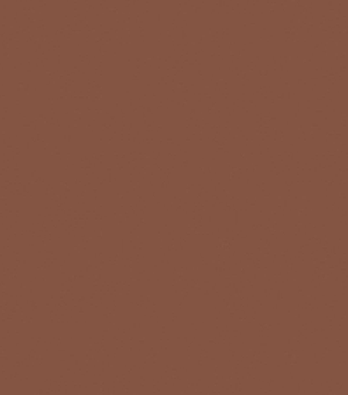 Delta Ceramcoat Acrylic Paint 2 oz, Dark Brown