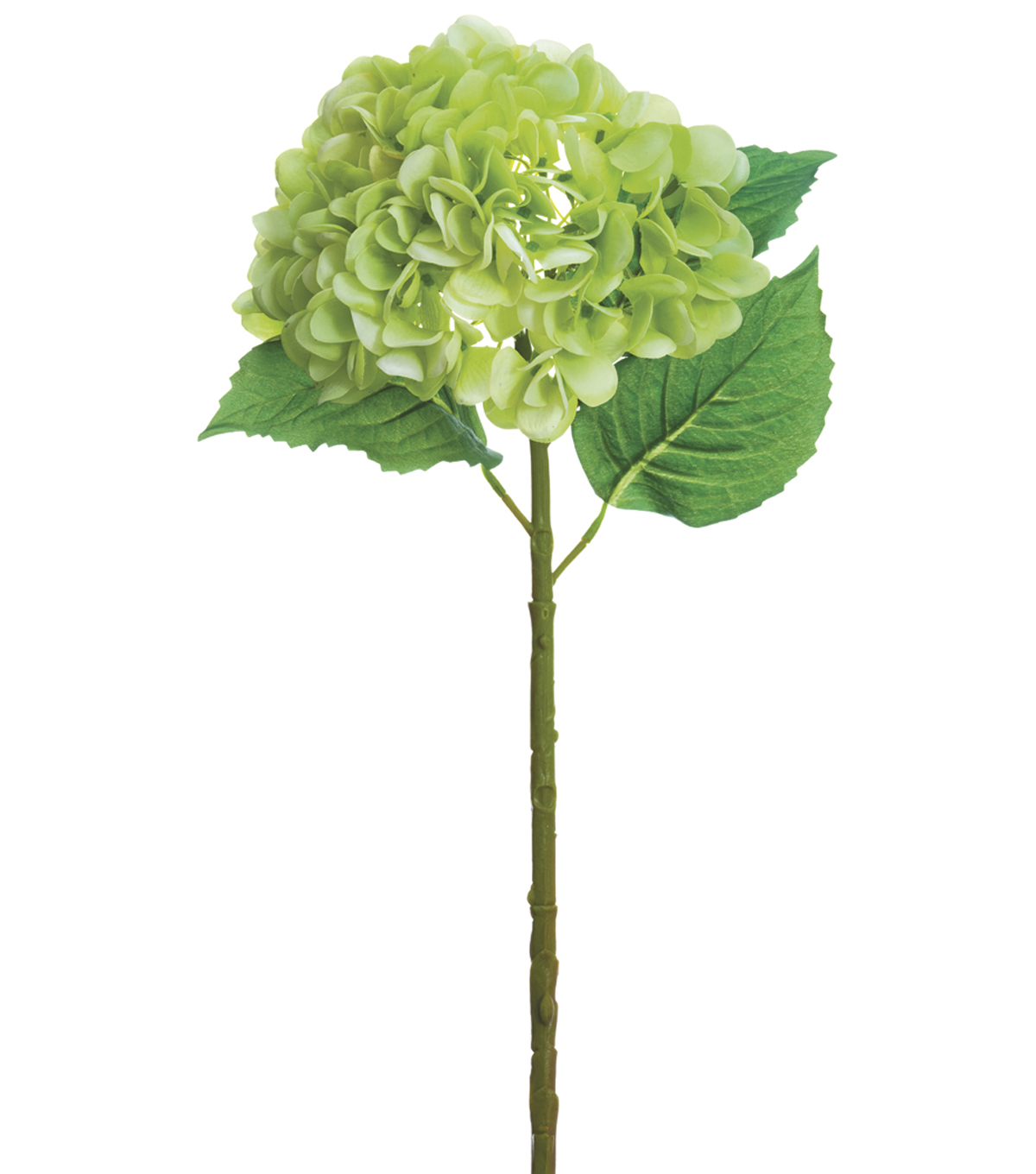 Bloom Room 19\u0027\u0027 Real Touch Hydrangea Stem-Green