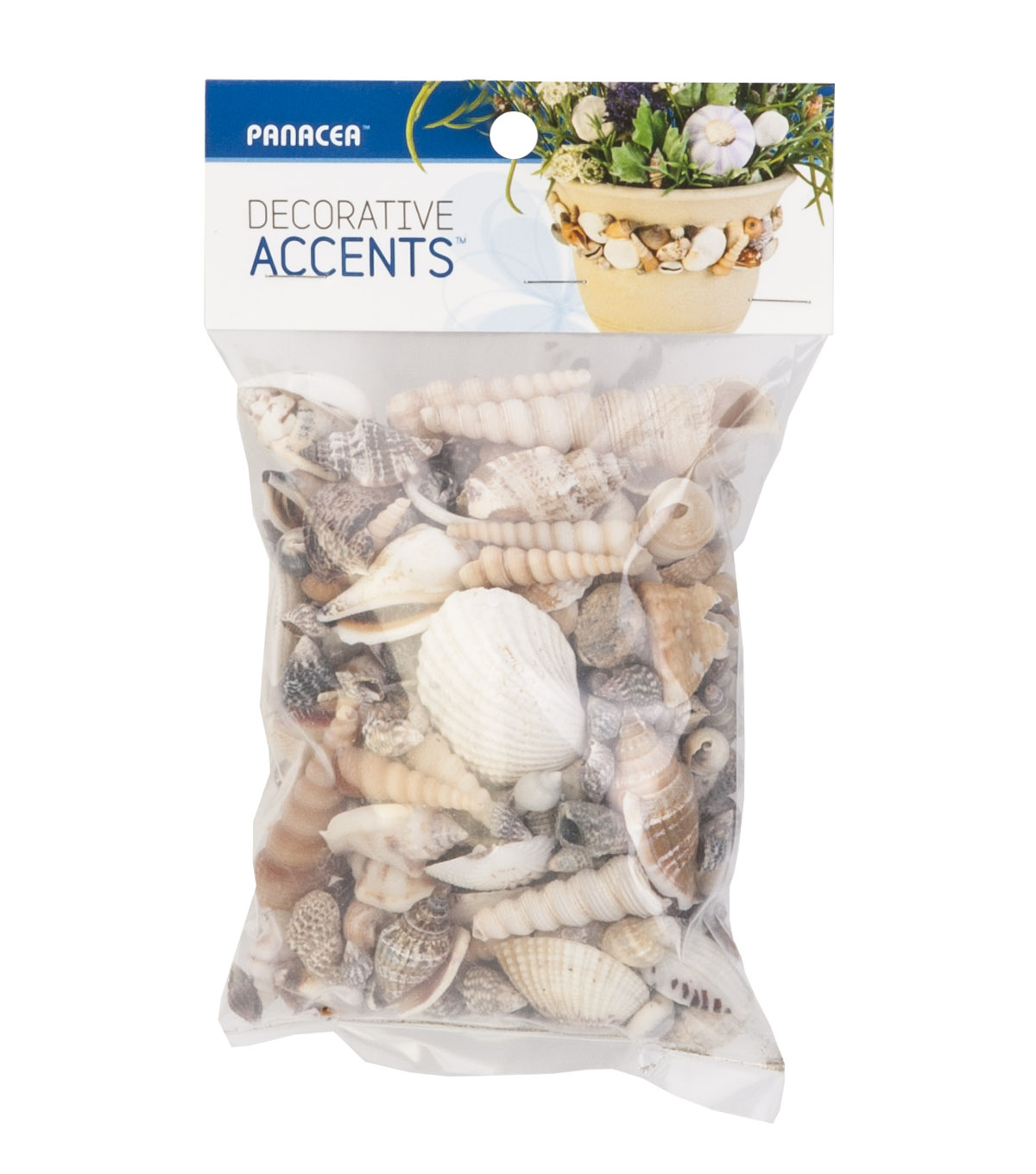 Assorted Small Sea Shells12oz Bag