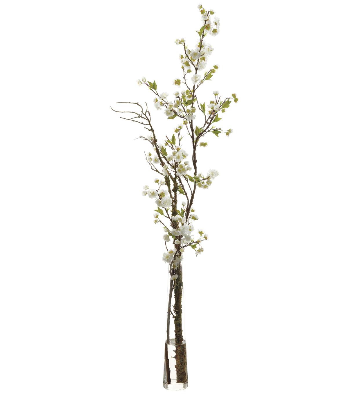 Cherry Blossoms In Gl Vase 52 U0027 White