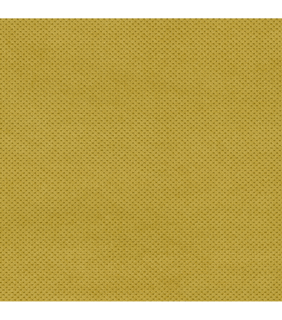 Home Decor 8\u0022x8\u0022 Fabric Swatch-Signature Series Griffin Pear