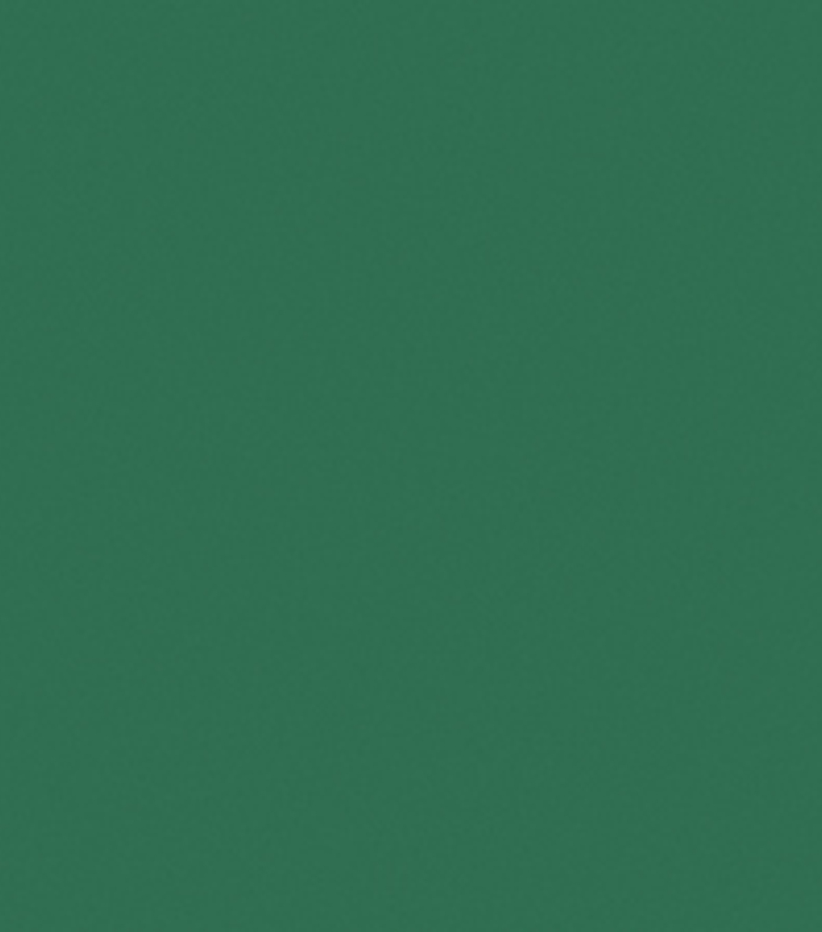 Jacquard 2.25 oz. Neopaque Acrylic Paint-1PK, Green