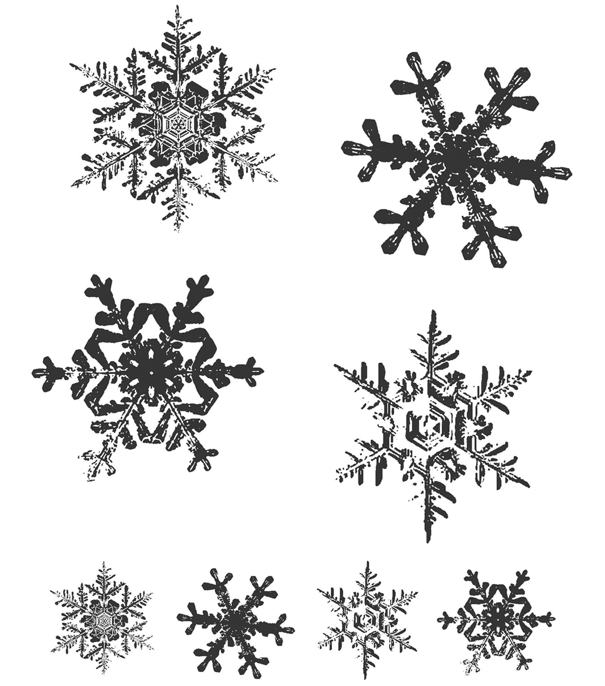 Tim Holtz Cling Rubber Stamp Set-Grunge Flakes