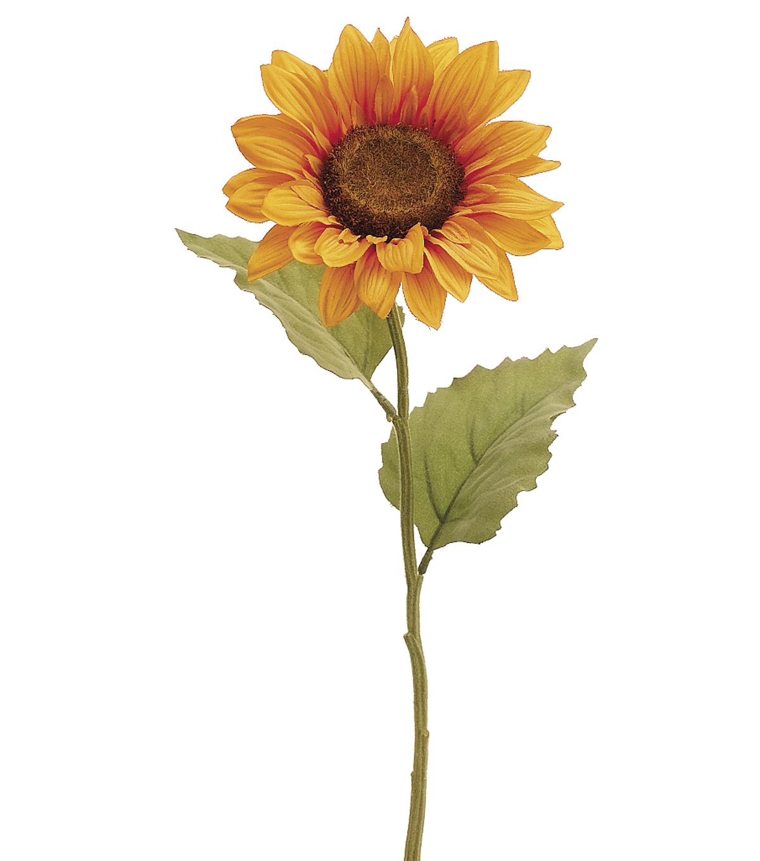 Bloom Room 215u0022 Sunflower Stem Yellow